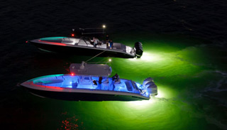 SeaClear - Prevents Growth on Underwater Lights